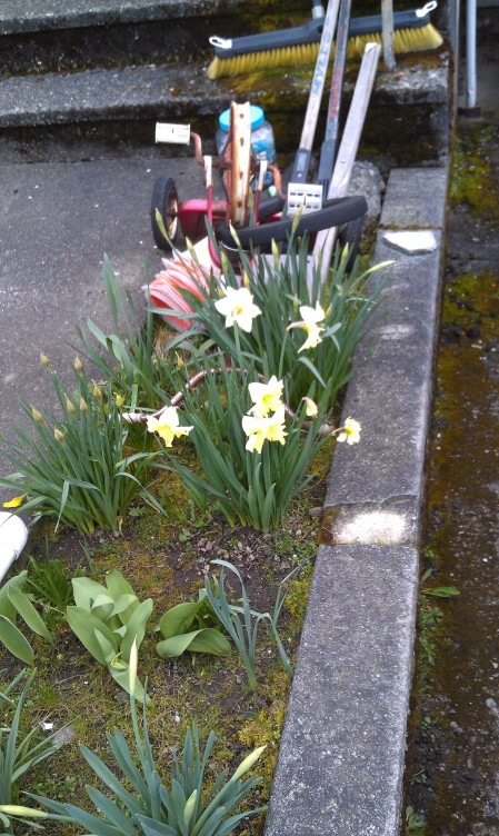 Spring is springing - before the equinox