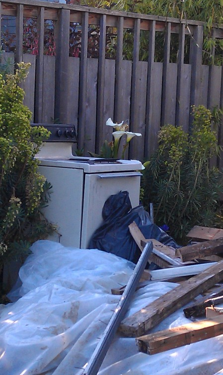 Appliances amoung the Calla Lilies