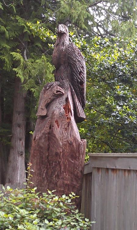 Eagle and salmon