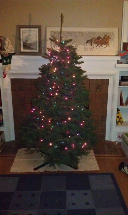 12-24-2013 - finally tree