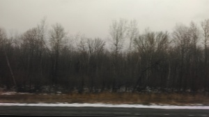 Scenes from a train. Could be Ohio, Pennsylvania or New York